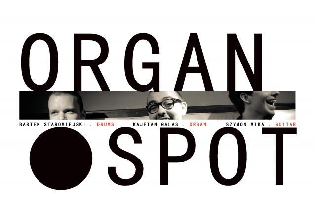 18.12 organ spot